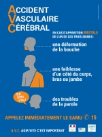 accident-cardiaque-cerebral-2014-campagne